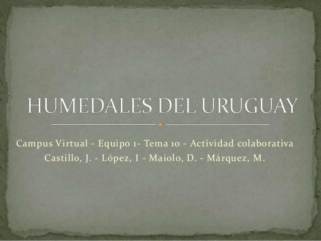 Campus Virtual - Equipo 1- Tema 10 - Actividad colaborativa Castillo, J. - López, I - Maiolo, D. - Márquez, M.
