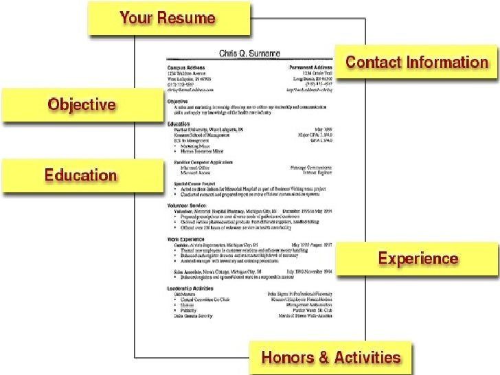 how to make a cv to apply for a job into anysearch co