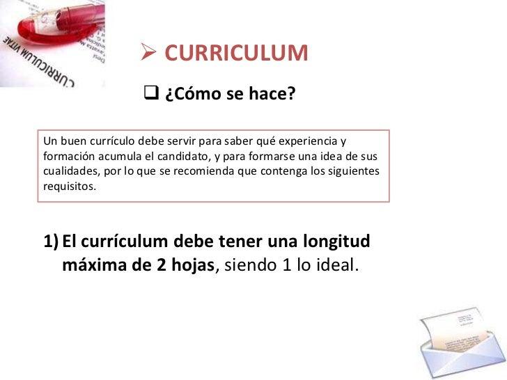 carta de presentacin 10 curriculum