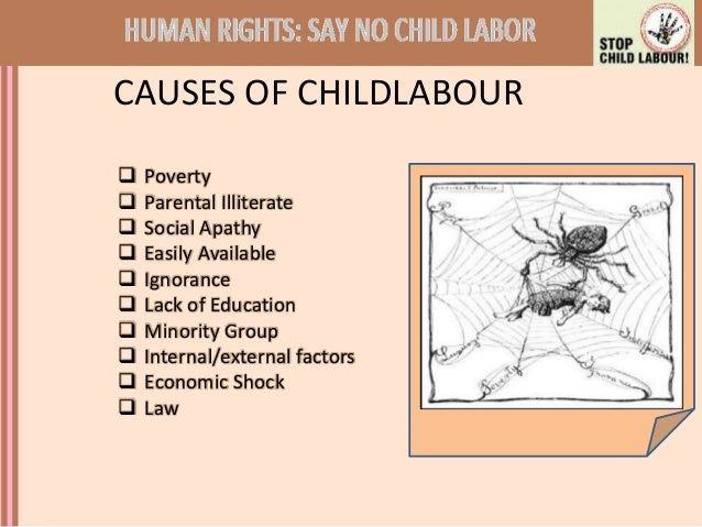 how parental ignorance causes child labor Rampant poverty obliges many parents to prevent their children from attending   are the principal causes of the disastrous state of zambia's health system  and  ignorance of basic hygienic measures breed viral illnesses such as measles,.