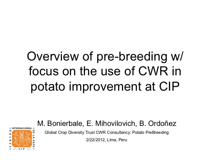 Overview of pre-breeding w/focus on the use of CWR in potato improvement at CIP M. Bonierbale, E. Mihovilovich, B. Ordoñez...