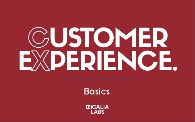 CUSTOMER EXPERIENCE. Basics.