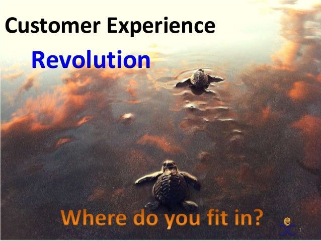 1 Revolution Customer Experience