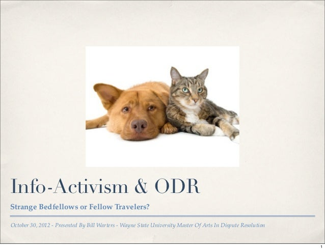 Info-Activism & ODRStrange Bedfellows or Fellow Travelers?October 30, 2012 - Presented By Bill Warters - Wayne State Unive...