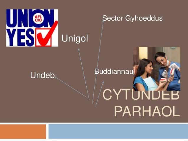 Sector Gyhoeddus        Unigol                 BuddiannauUndeb                   CYTUNDEB                    PARHAOL