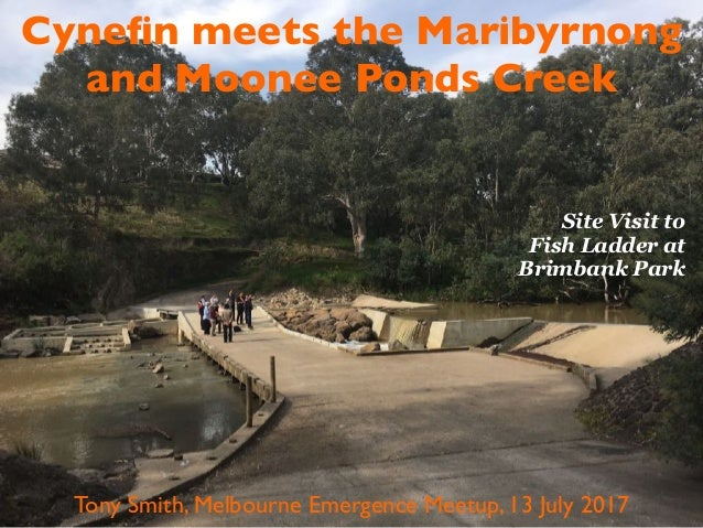 Cynefin meets the Maribyrnong and Moonee Ponds Creek Tony Smith, Melbourne Emergence Meetup, 13 July 2017 Site Visit to Fis...