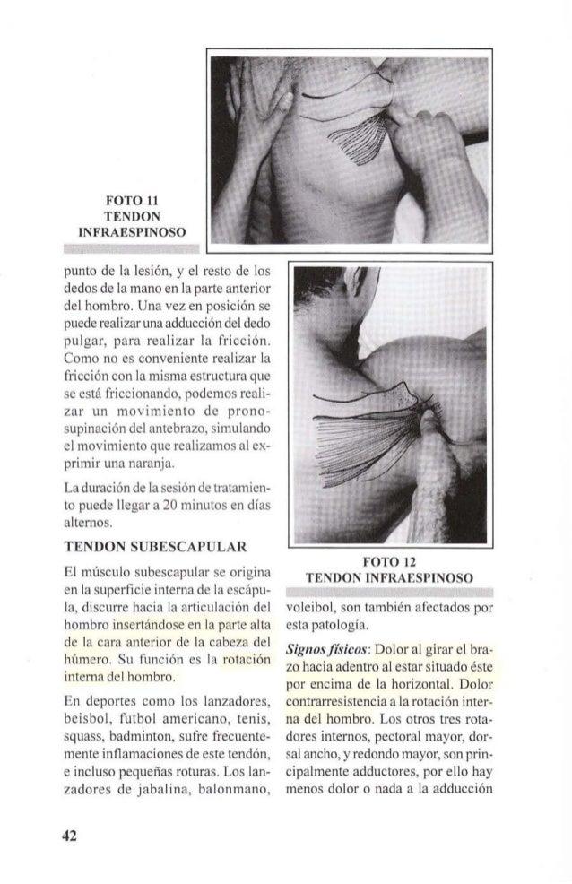 contrarresistencia. Dolor «a punta de  dedo» al presionar el tendón en su  inserción humeral.  Los movimientos pasivos sue...
