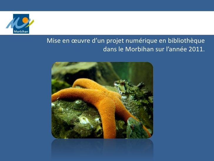 Mise en œuvre d'un projet numérique en bibliothèque                  dans le Morbihan sur l'année 2011.