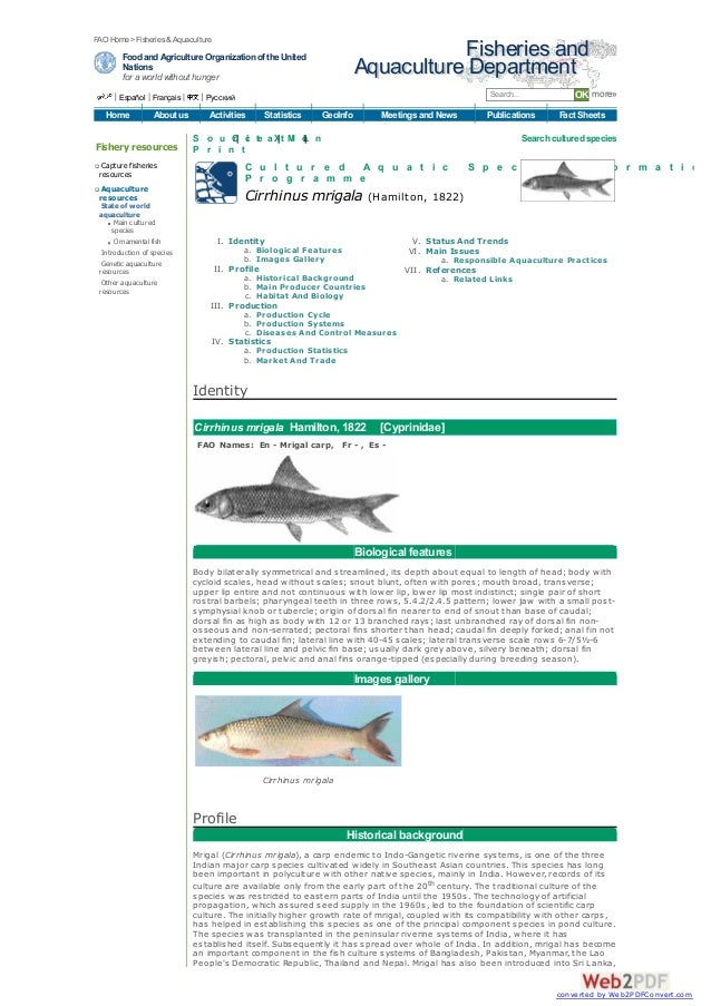 FAO Home >Fisheries & Aquaculture        Food and Agriculture Organization of the United                              Fish...