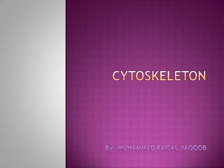 Outlines•What is cytoskeleton•Functions of Cytoskeleton•Types of cytoskeleton•Microtubules•Intermediate Filaments•Thin/ Mi...