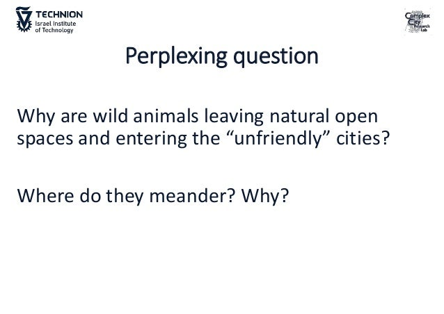 What is the most useful spatial resolution/scale for understanding cities/nature interactions? •The environmental policy d...