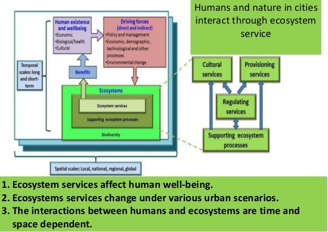 1. Ecosystem services affect human well-being. 2. Ecosystems services change under various urban scenarios. 3. The interac...