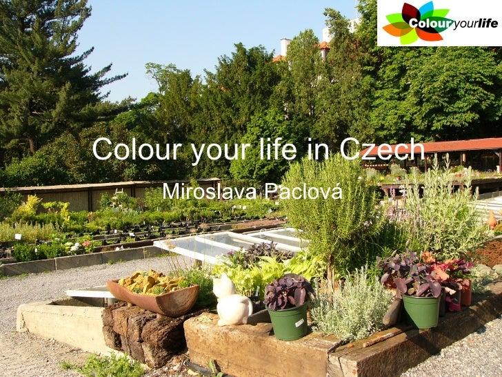 Colour your life in Czech      Miroslava Paclová