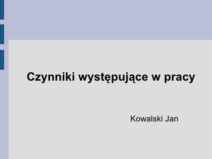 Czynniki występujące w pracy <ul><ul><li>Kowalski Jan </li></ul></ul>