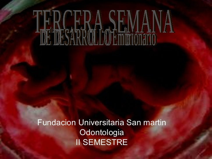 TERCERA SEMANA  DE DESARROLLO Embrionario  Fundacion Universitaria San martin Odontologia II SEMESTRE