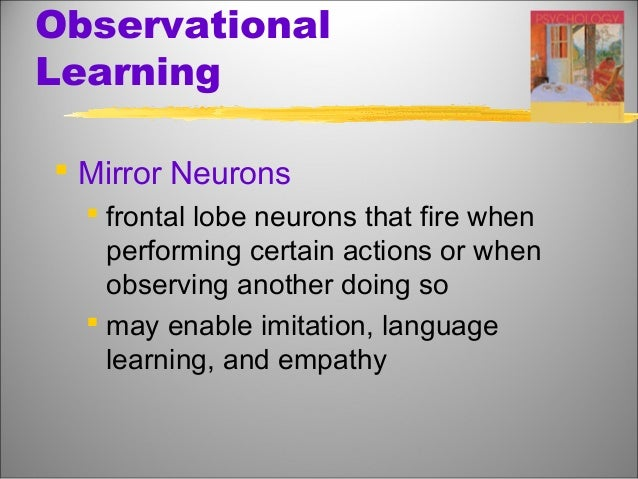Learning developmental psychology by maghan das for Mirror neurons psychology definition