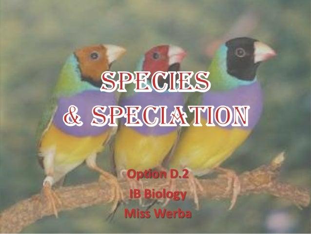 Option D.2IB BiologyMiss Werba