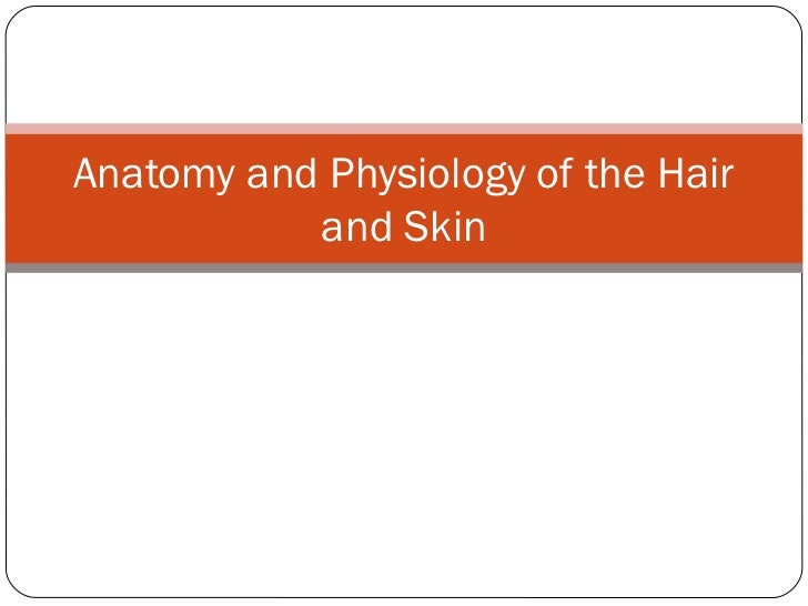 Anatomy and Physiology of the Hair           and Skin