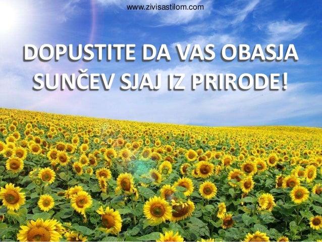 www.zivisastilom.comDOPUSTITE DA VAS OBASJA SUNČEV SJAJ IZ PRIRODE!