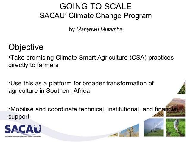 GOING TO SCALE           SACAU' Climate Change Program                      by Manyewu MutambaObjective•Take promising Cli...