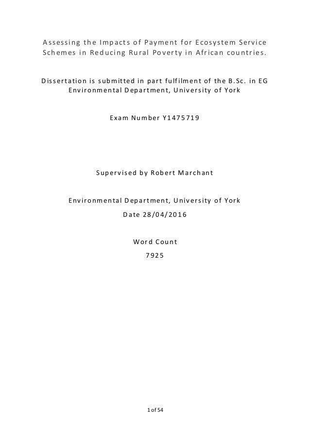 dissertation rmi rsa