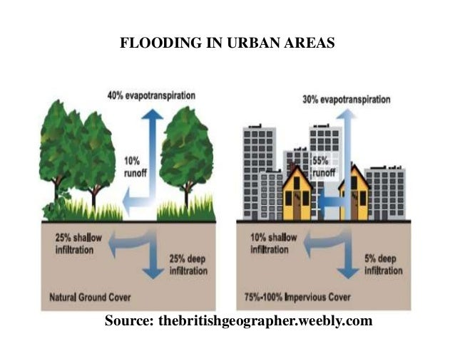 What Are the Negative Effects of Urbanization?