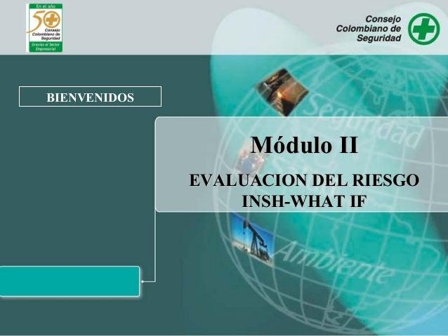 BIENVENIDOS Módulo IIMódulo II EVALUACION DEL RIESGOEVALUACION DEL RIESGO INSH-WHAT IFINSH-WHAT IF