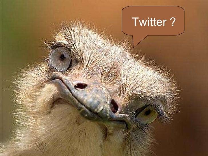 Twitter ?