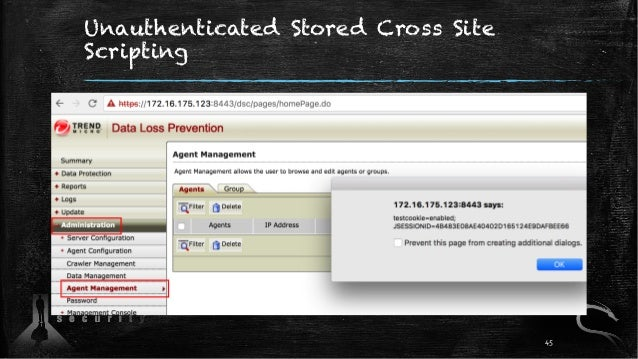 Unauthenticated Stored Cross Site Scripting 45