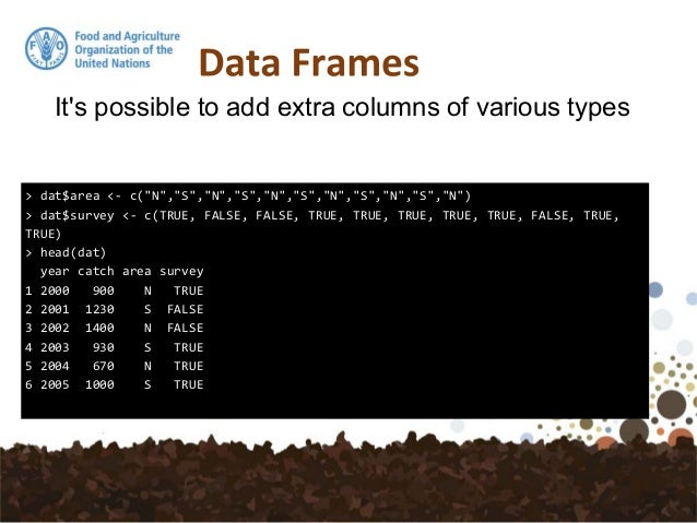 6. Vectors – Data Frames