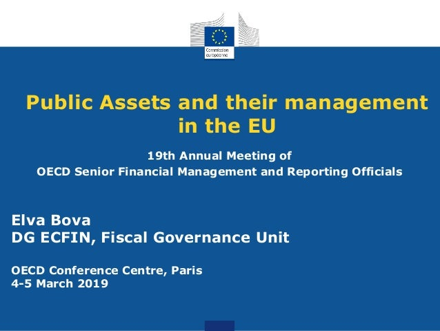 Public Assets and their management in the EU 19th Annual Meeting of OECD Senior Financial Management and Reporting Officia...