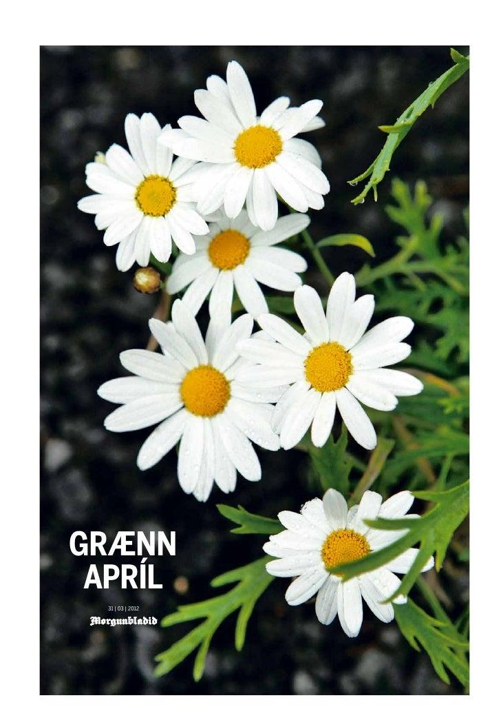 GRÆNN APRÍL  31 | 03 | 2012