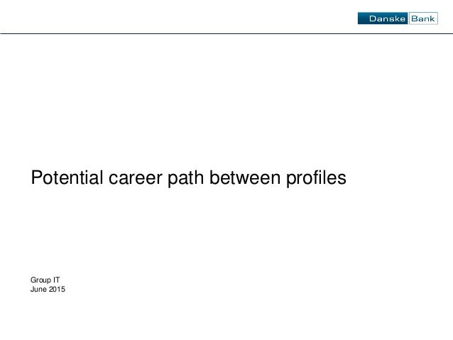Group IT June 2015 Potential career path between profiles