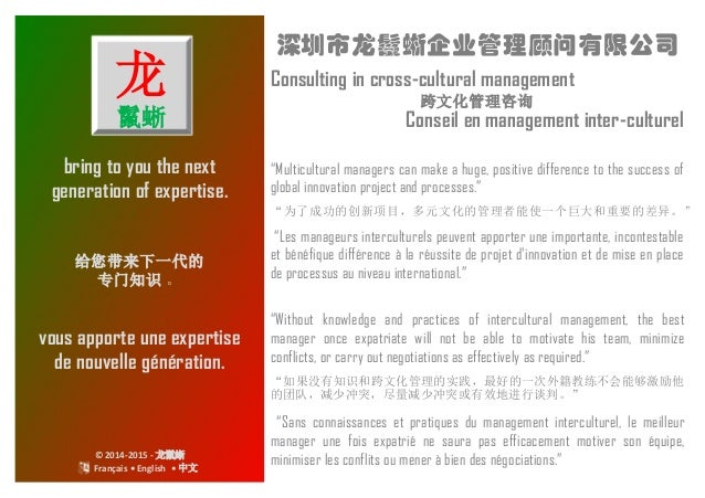 "bring to you the next generation of expertise. 深圳市龙鬣蜥企业管理顾问有限公司 Consulting in cross-cultural management ""Multicultural man..."