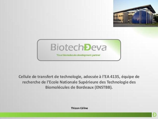 Ð Thizon Céline Cellule de transfert de technologie, adossée à l'EA 4135, équipe de recherche de l'Ecole Nationale Supérie...