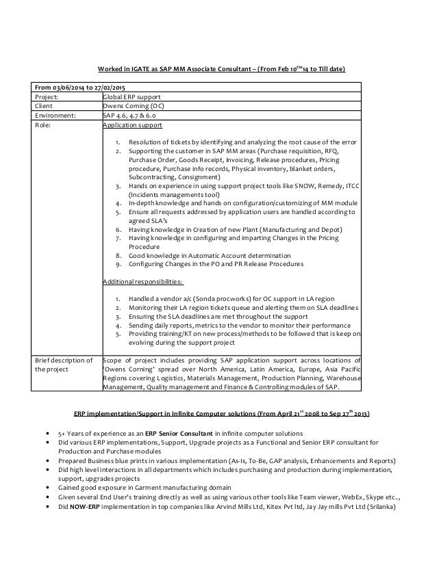 Sap Fi Cv Template Bw Sample Resumes Professional Scribd  Sap Mm Resume