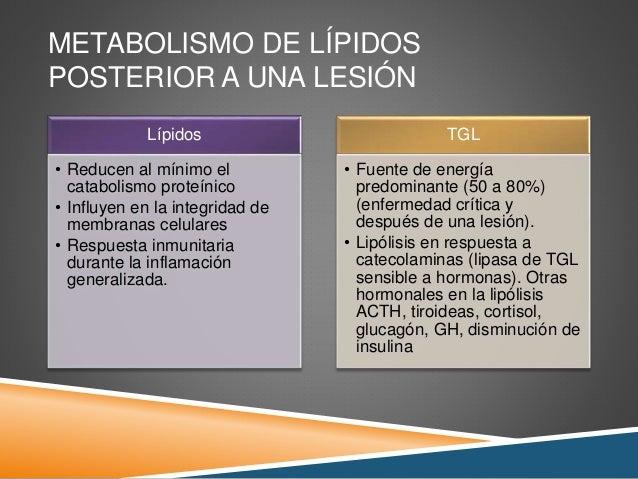 Medicamentos para bajar la grasa del abdomen