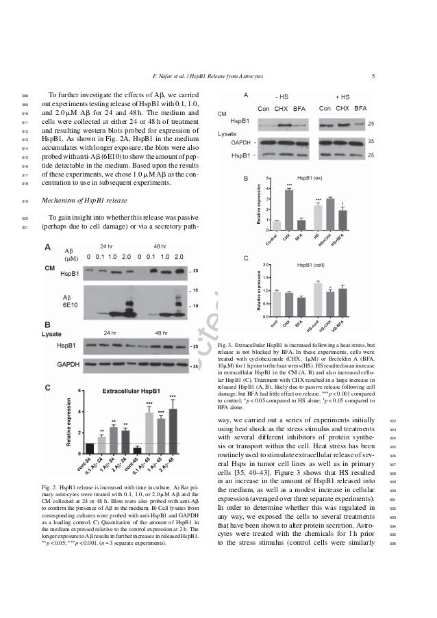 UncorrectedAuthorProof F. Nafar et al. / HspB1 Release from Astrocytes 5 To further investigate the effects of A␤, we carr...