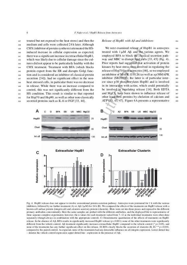 UncorrectedAuthorProof 6 F. Nafar et al. / HspB1 Release from Astrocytes treated but not exposed to the heat stress) and t...