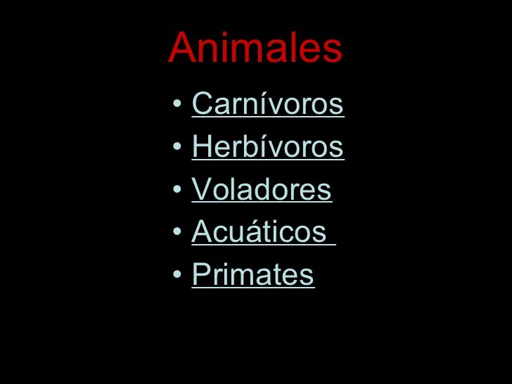 Animales <ul><li>Carnívoros </li></ul><ul><li>Herbívoros </li></ul><ul><li>Voladores </li></ul><ul><li>Acuáticos  </li></u...