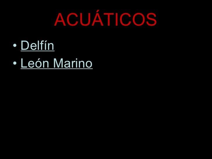 ACUÁTICOS <ul><li>Delfín </li></ul><ul><li>León Marino </li></ul>