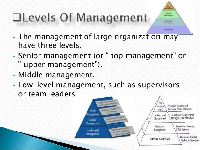 "three levels of information management The three levels of management are top, middle, and lower level (first-line managers/ operational) levels of management the term ""levels of management' refers to a line of demarcation between various managerial positions in an organization."