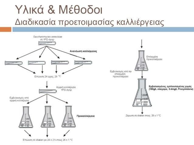 Υλικά & Μέθοδοι Διαδικασία προετοιμασίας καλλιέργειας