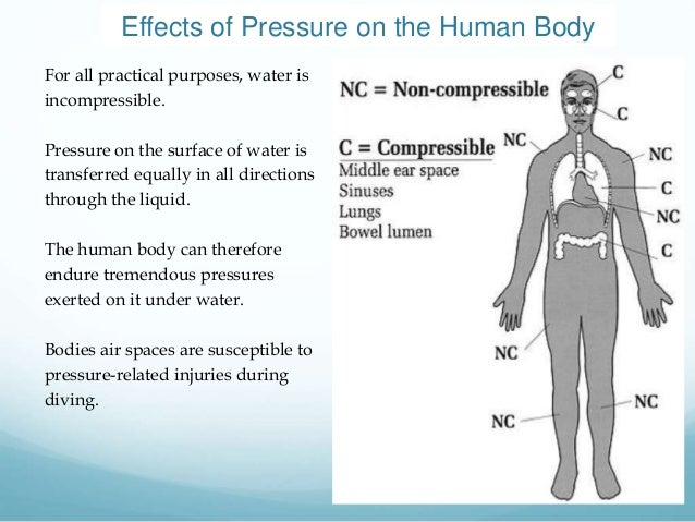 the effects of changes in altitude in the human body High altitude have many physiological effects on human body starting from low pressure to low oxygen alters some of our physiological equilibrium at high altitudes.