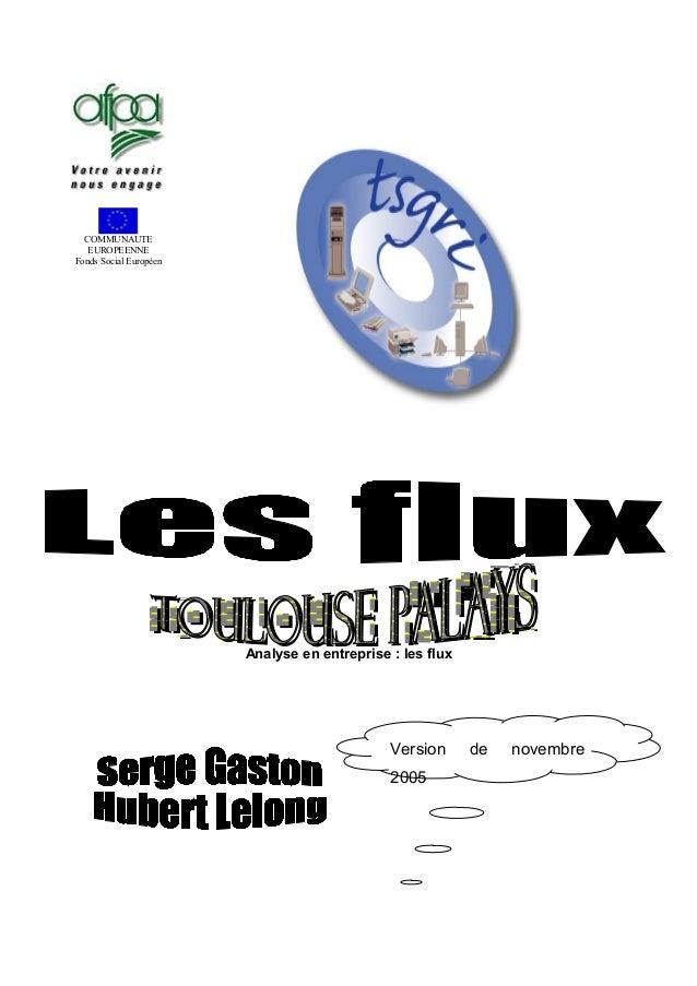 COMMUNAUTE EUROPEENNE Fonds Social Européen Analyse en entreprise : les flux Version de novembre 2005
