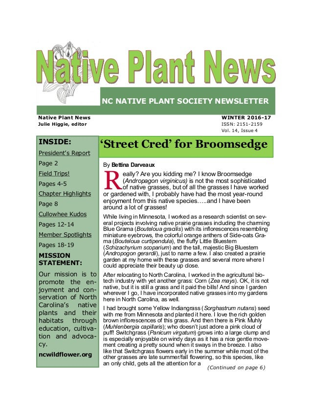 NC NATIVE PLANT SOCIETY NEWSLETTER WINTER 2016-17 ISSN: 2151-2159 Vol. 14, Issue 4 'Street Cred' for Broomsedge Native Pla...