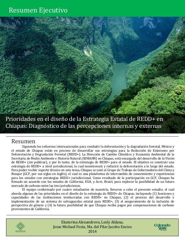 [Type text] [Type text] Resumen Siguiendo los esfuerzos internacionales para combatir la deforestación y la degradación fo...