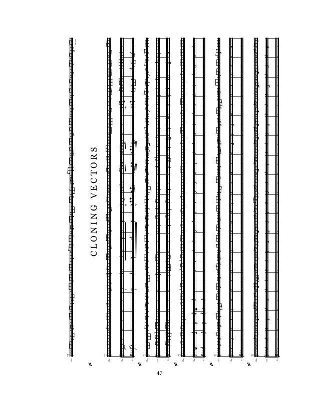 duke university phd dissertations Classical studies 233 allen building po box 90103 duke university durham, nc 27708-0103 tel: 919-681-4292 fax: 919-681-4262.