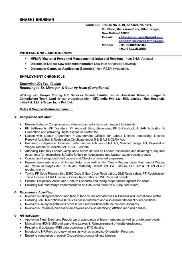 resume without pics big basket