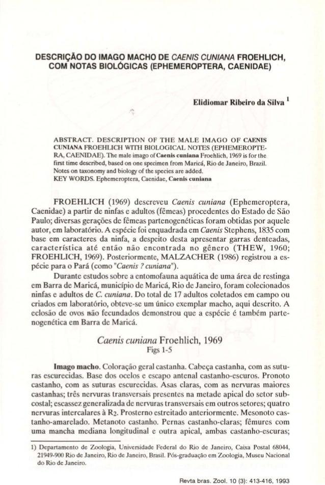 DESCRiÇÃO DO IMAGO MACHO DE CAENlS CUNIANA FROEHUCH,  COM NOTAS BIOLÓGICAS (EPHEMEROPTERA, CAENIDAE)  Elidiomar Ribeiro da...